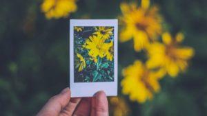 Tipps und Tricks für bessere Bilder mit der Sofortbildkamera